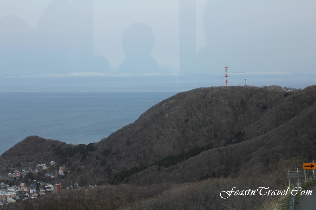 View from Hakodate Ropeway